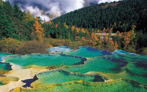 Обои Красивый пейзаж природы, лес, деревья, озера, вода