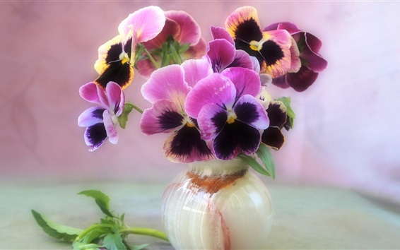Wallpaper Beautiful pansies, vase, flowers close-up