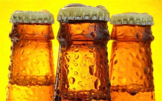 Обои Бутылки, пиво, капли воды, напитки