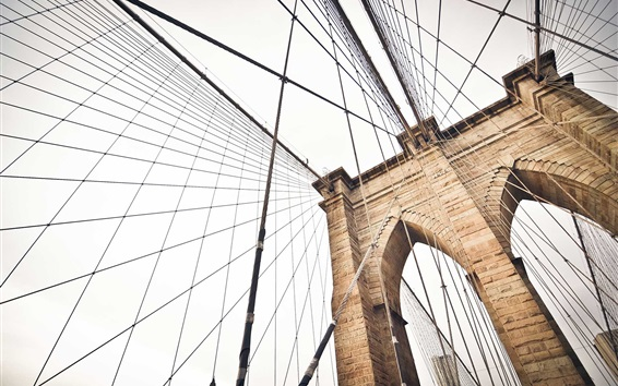 Wallpaper Bridge, metal rope