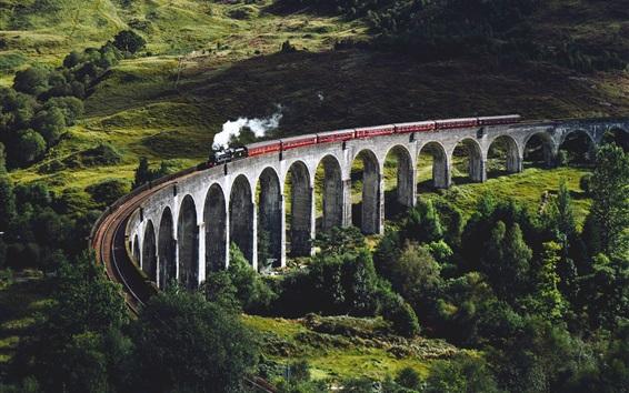 Papéis de Parede Ponte, trem, ferrovia, árvores, grama