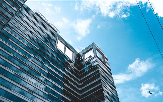 Papéis de Parede Edifício, céu azul, pássaros, fio
