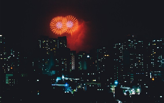 Papéis de Parede City night, fogos de artifício, feriado