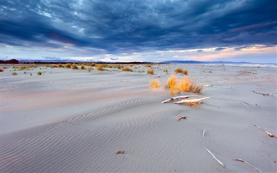 壁紙 砂丘、砂、砂漠、草、雲、夕暮れ