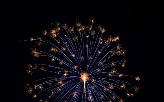 Papéis de Parede Fogos de artifício, feriado, noite, escuridão