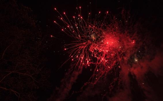 Wallpaper Fireworks, sparks, beautiful sky, night