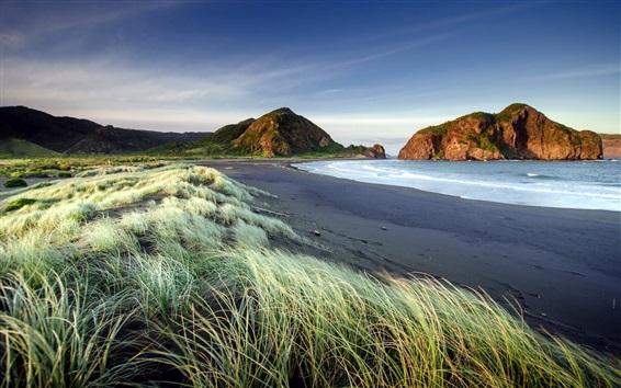 壁紙 草、砂浜、海、山、夕暮れ