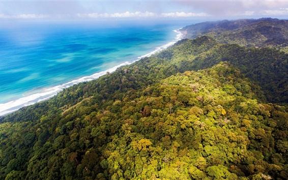 Fondos de pantalla Selvas, bosque, costa, mar azul, nubes, Costa Rica