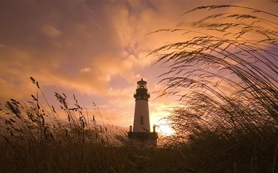 Fond d'écran Phare, herbe, roseaux, nuages, coucher de soleil