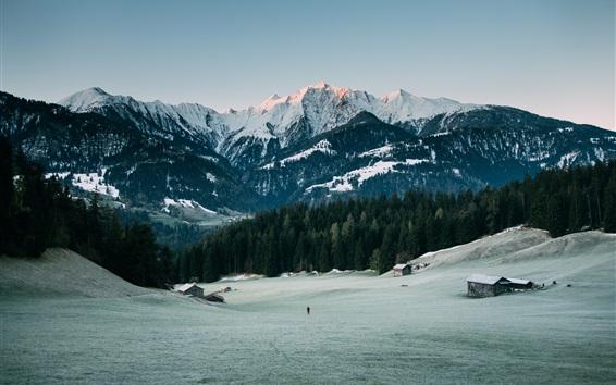 Обои Горы, вершины, снег, лес, зима