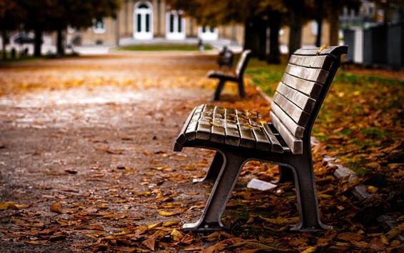 Fond d'écran Parc, banc, feuilles jaunes, automne