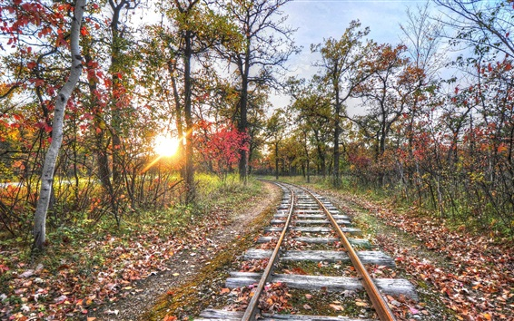 Wallpaper Railway, track, trees, sunset