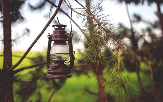 Обои Ретро-фонарь, лампа, веточки