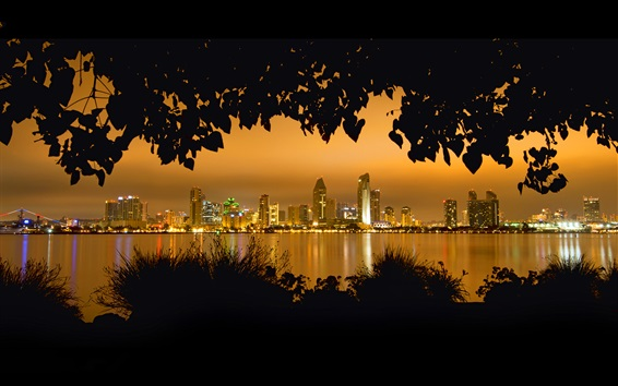Wallpaper San Diego, night, trees, leaves, river, skyscrapers, lights, USA