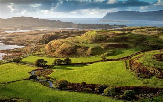 Wallpaper Scotland, fields, trees, river, road, green