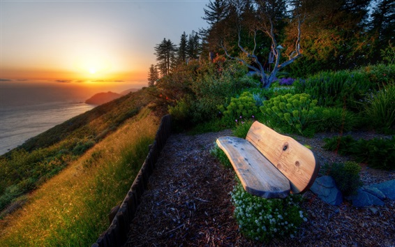 Wallpaper Sea, coast, slope, grass, trees, bench, sunset