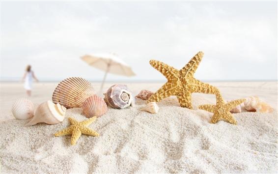 壁紙 貝殻、ヒトデ、砂