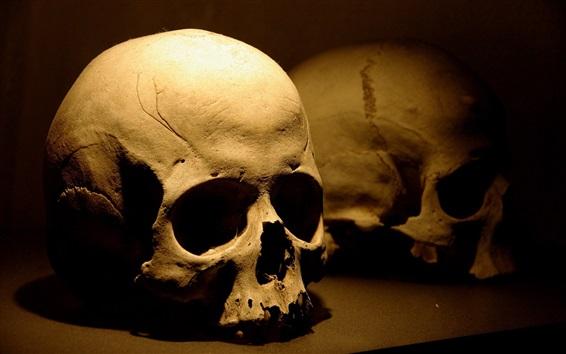 Papéis de Parede Crânio, ossos