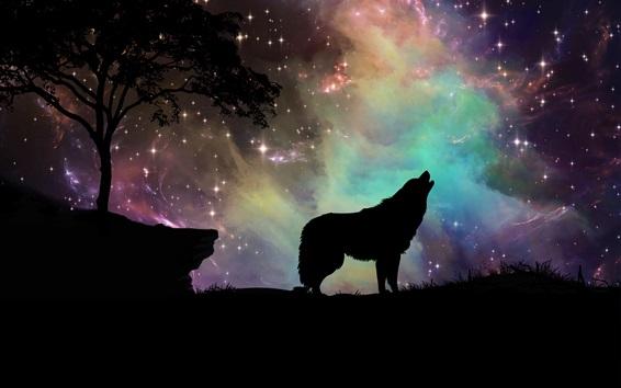 Wallpaper Starry, wolf, sky, silhouette, art design