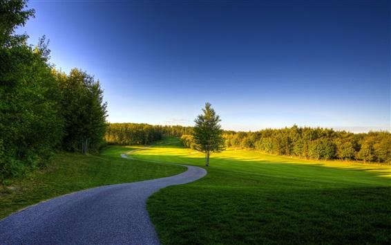 Papéis de Parede Verão, árvores, gramado, grama, verde, caminho