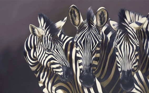 Wallpaper Three zebras, black background