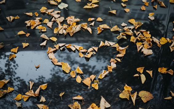 Wallpaper Yellow leaves, ground, love heart