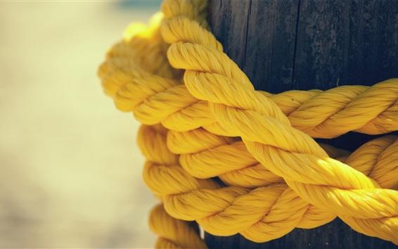 Wallpaper Yellow rope close-up