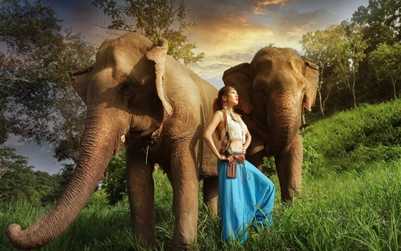 Wallpaper Asian girl, elephants, grass, sunshine