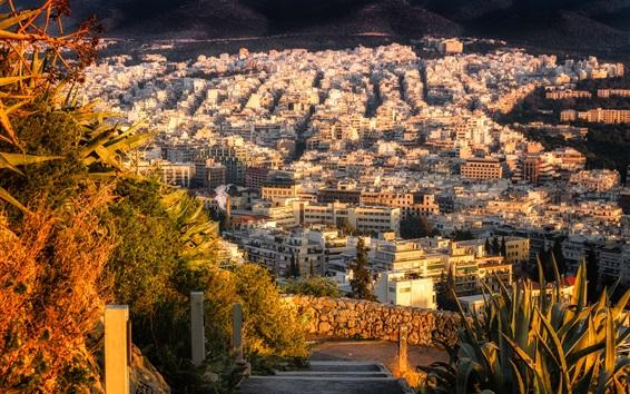 Wallpaper Athens, Greece, city, houses, top view, sun