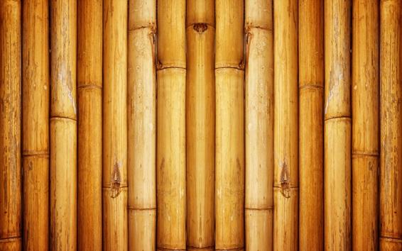 Обои Бамбуковый фон