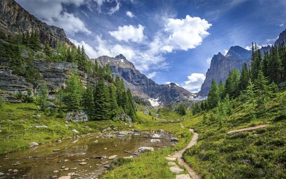 Обои Национальный парк Банф, Альберта, Канада, горы, деревья, тропинка, облака