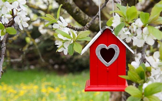 Papéis de Parede Birdhouse, floração, primavera
