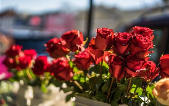 Fond d'écran Bouquet de fleurs roses rouges, lumière