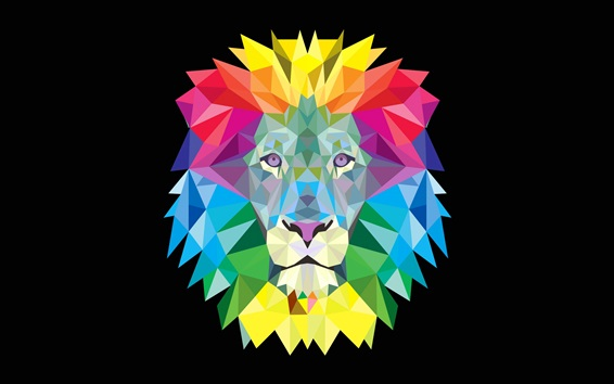Wallpaper Colorful lion mane, vector picture