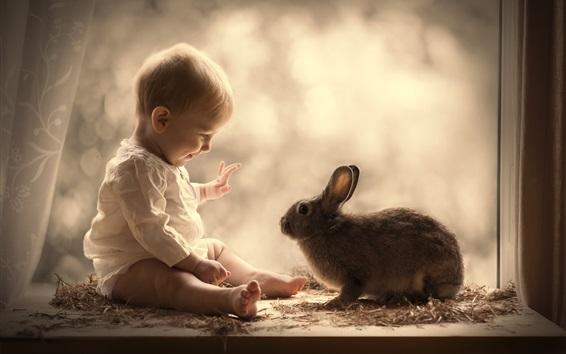 Fond d'écran Mignon bébé et lapin gris