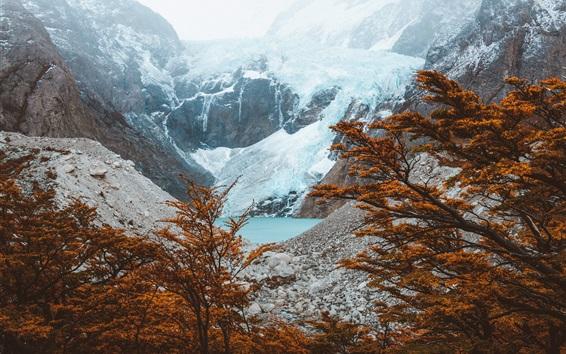 Wallpaper El Chalten, Argentina, mountains, lake, trees, autumn