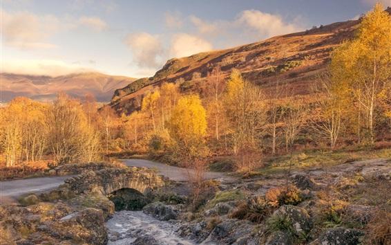 Papéis de Parede Inglaterra, Cumbria, árvores, montanhas, rios, outono