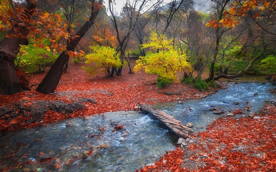 Wallpaper Foothills, trees, autumn, bridge, stream