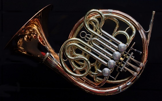 Wallpaper French horn, black background