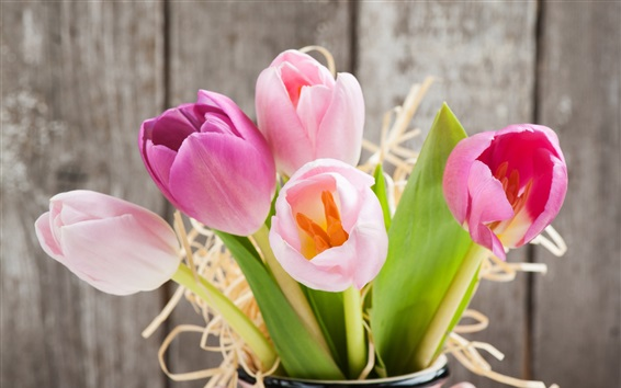 Wallpaper Fresh tulips, pink flowers, vase