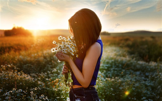Wallpaper Girl and chamomile, flowers field, sunset