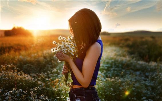 Papéis de Parede Menina e camomila, campo de flores, por do sol