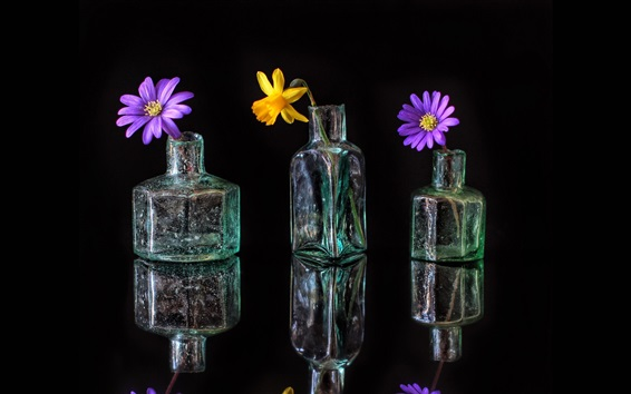 Wallpaper Glass bottles, flowers, reflection, black background
