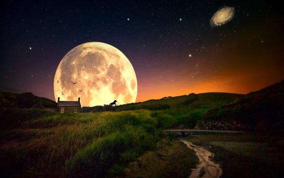 Fond d'écran Herbe, hutte, planète, étoilé, monde de rêve