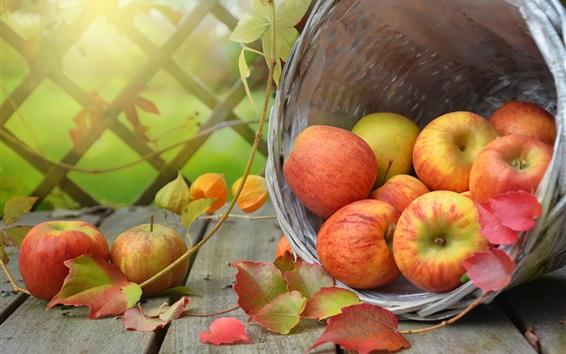 Wallpaper Harvest, ripe apples, basket, autumn