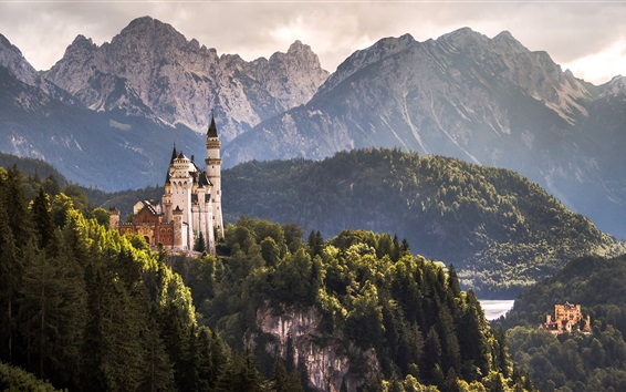 Wallpaper Hohenschwangau Castle, Alps, trees, Germany
