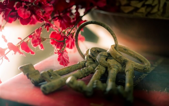 Wallpaper Keys and flowers