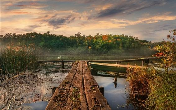 Wallpaper Lake, pier, boats, white swan, morning