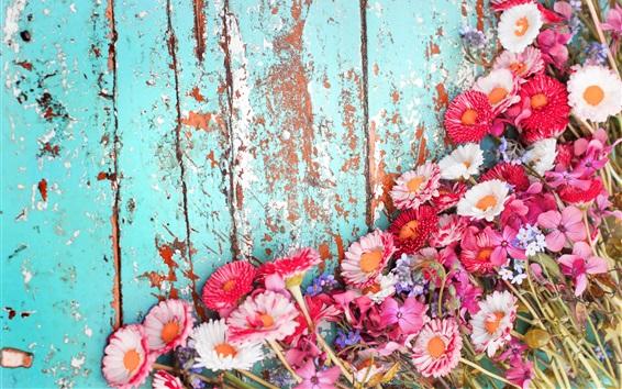 Papéis de Parede Muitas flores, crisântemo rosa e branco, placa de madeira