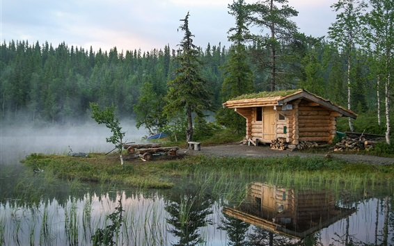 Wallpaper Norway, forest, trees, lake, hut, water reflection